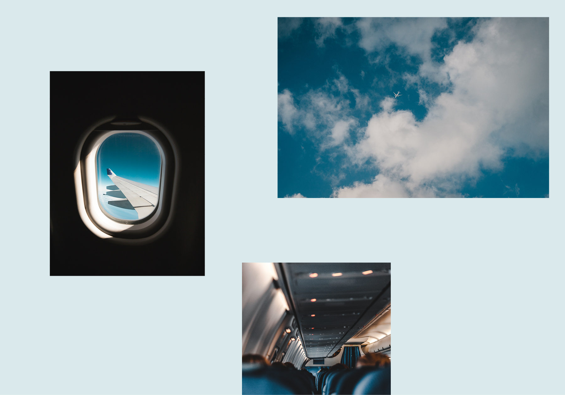 atelieratoca_IATA22